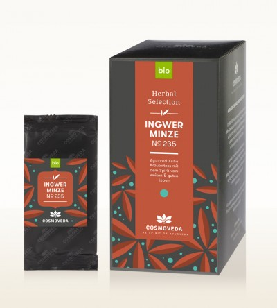BIO Ingwer Minze Tee