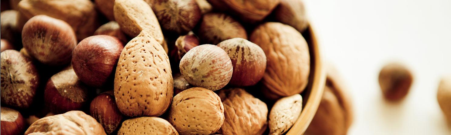 Nüsse, Samen & Saaten